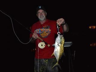 Night fishing For Jacks in Ft Myers