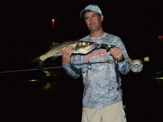 Night Fly Fishing For Snook In Fort Myers