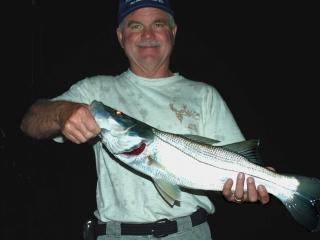 Night fishing charters for Snook in Fort Myers