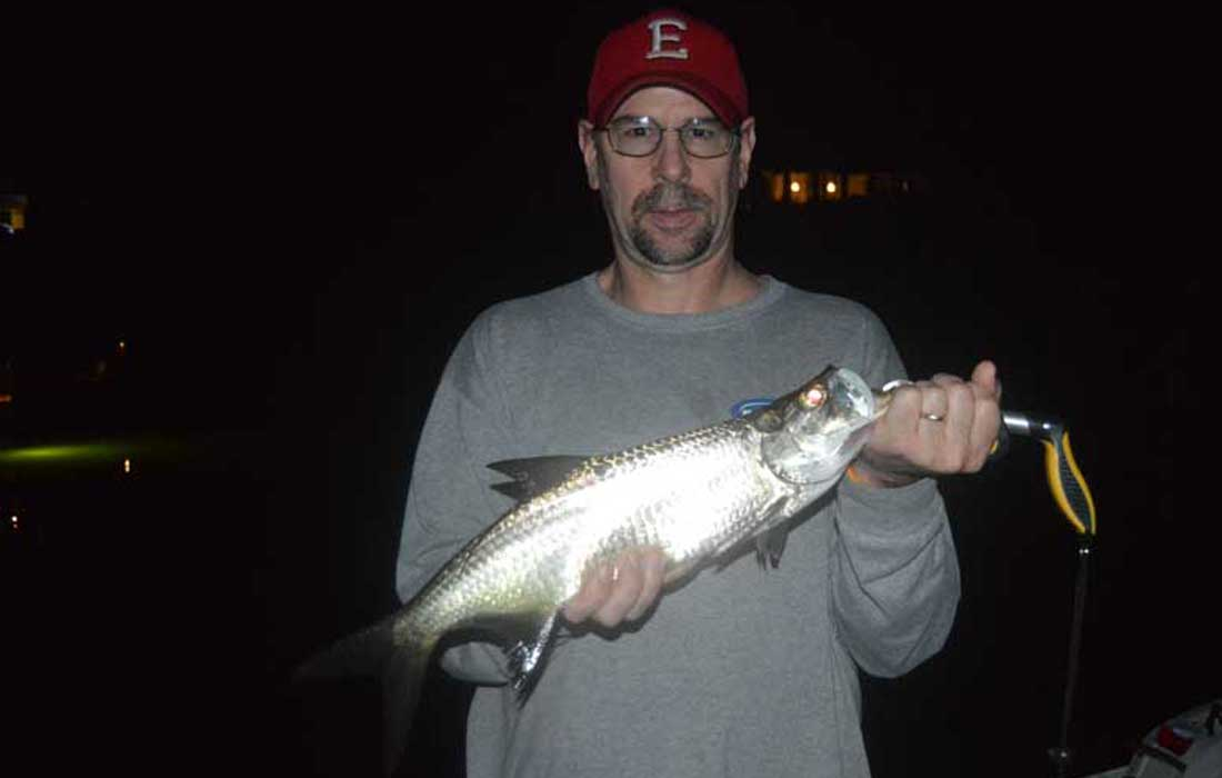 Firsat Tarpon Caught At Night In Fort Myers
