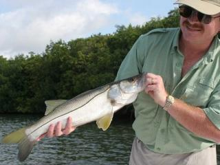 Nice Average Fort Myers Snook