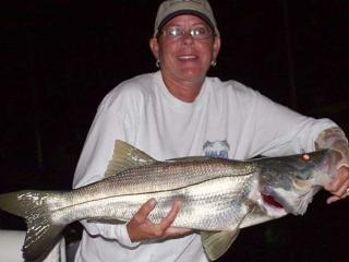 Big Snook Caught On A Night Fishing Charter With What A Hawg Charters